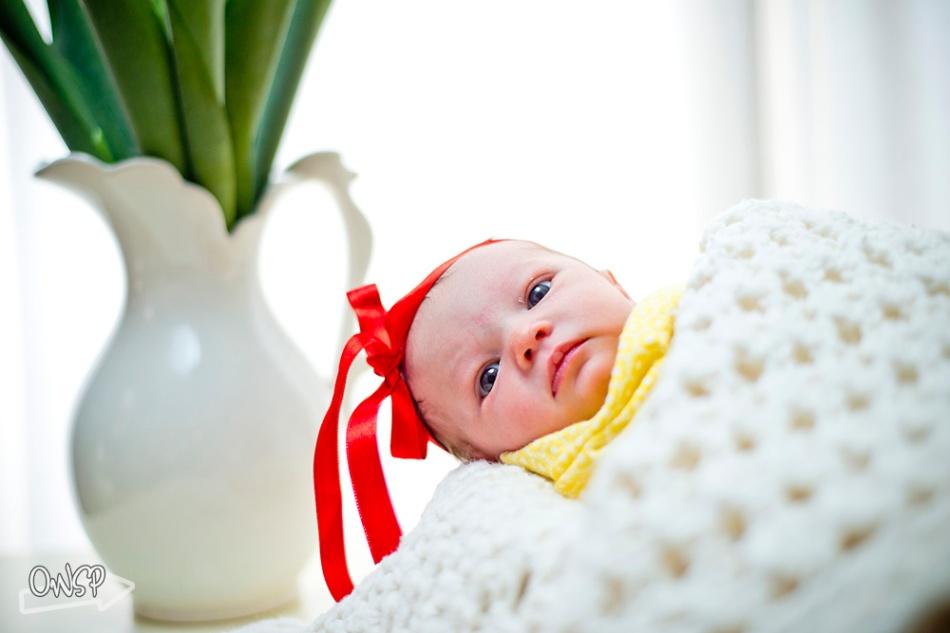 20120223-OWSP Newborn Photography-025