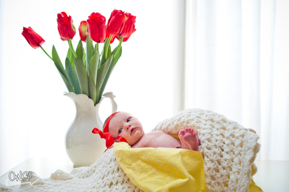 20120223-OWSP Newborn Photography-035
