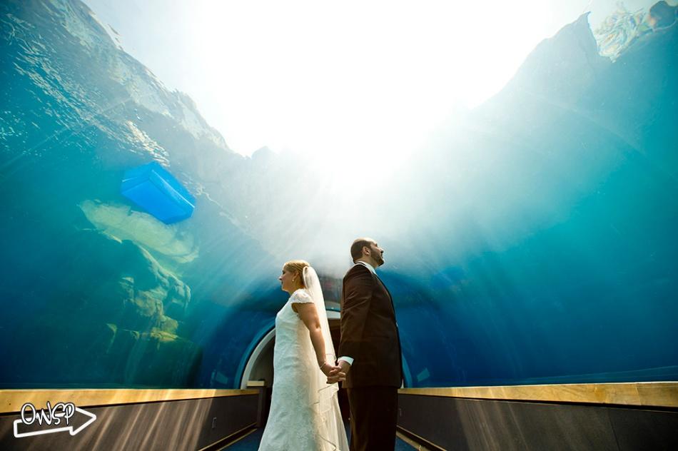 OWSP-Wedding-049
