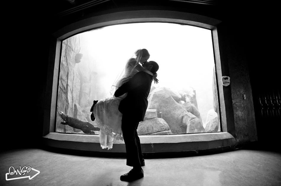 OWSP-Wedding-086