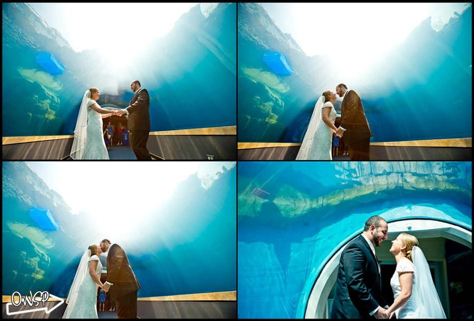 OWSP Wedding -13