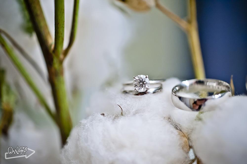 OWSP-Sarah-Caleb-Wedding-1501
